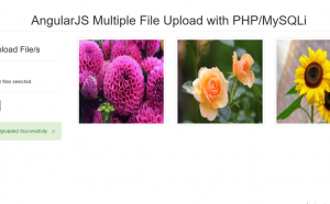 multiple file upload using angularjs