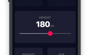 bmi calculator flutter