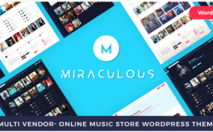 online music store wordpress theme